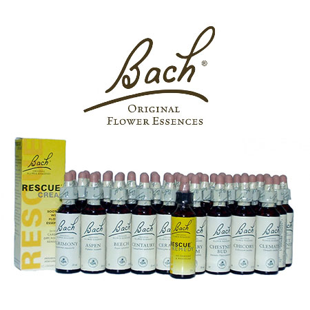 uk-reclassifies-bach-flower-as-food-supplement